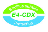 Fertilis Speed 18+5+10+3MgO  25 kg  bevat Bacillus subtilis_